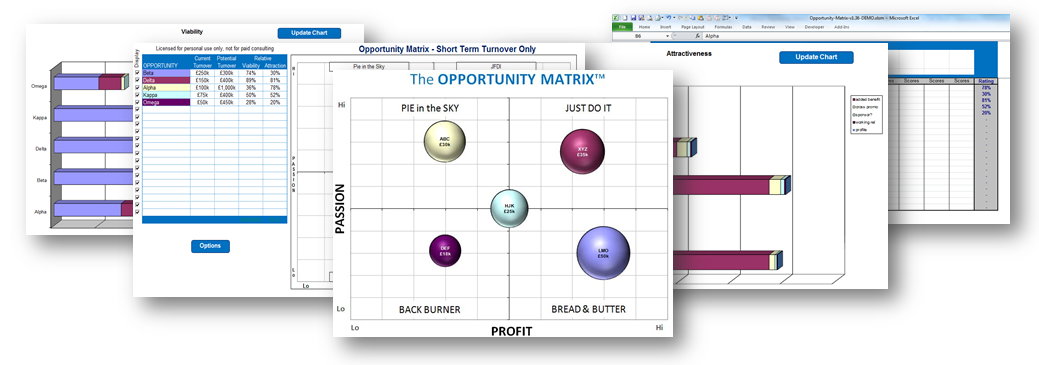 Opportunity Matrix screens